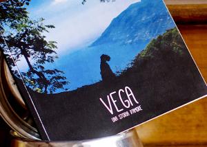 vega-01